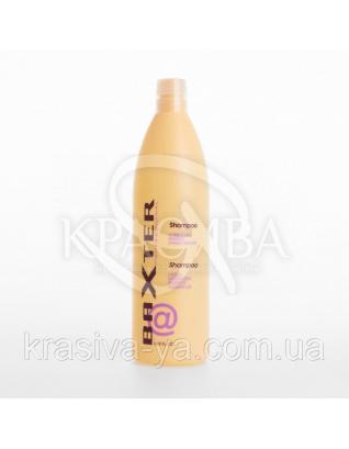 Baxter Шампунь увлажняющий с маслом семян льна для частого использования, 300 мл : Punti di Vista