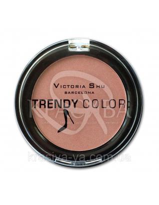 VS Trendy Colour Румяна компактные 114, 2.5 г : Макияж для лица