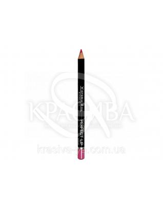 VS Perfect Lip Pecncil Карандаш для губ 152, 1.75 г : Макияж для губ