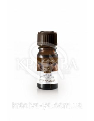Эфирное масло - Корица, 7 мл : Эфирные масла