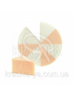 Beter Спонж для макияжа сегментированный круглый, латекс 8 шт, 16.5 см : Аксессуары