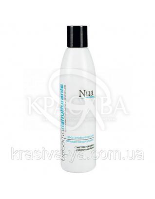 NUA Відновлюючий бальзам-кондиціонер з екстрактом вівса і насінням льону, 250 мл : Косметика для волосся