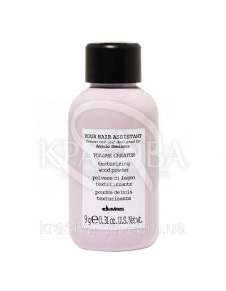 Текстурирующая пудра для придания объема Your Hair Assistant, 9г : Пудры для волос