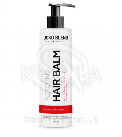 Бальзам для сухих и поврежденных волос Restoring Joko Blend, 250 мл - 1