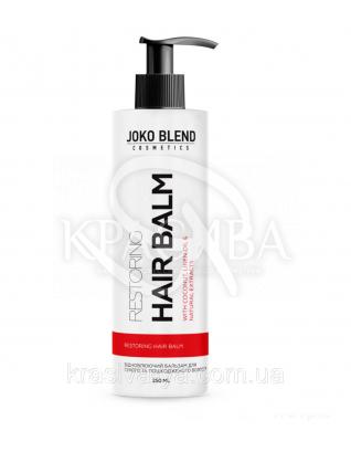 Бальзам для сухого і пошкодженого волосся Restoring Joko Blend, 250 мл : Joko Blend