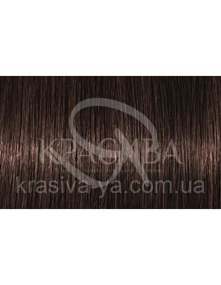 ITone Крем-краска для волос 4.37 Средний коричневый золотистый фиолетовый, 60 мл : Аммиачная краска