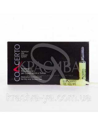 Concerto Ампулы лечебные для сухих и ломких волос, 10*10 мл : Средства для восставновления волос