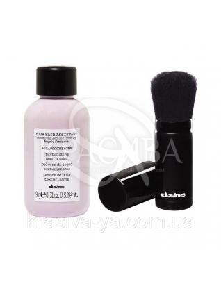 Текстурирующая пудра и брашинг для пудры Your Hair Assistant, 9г : Пудры для волос