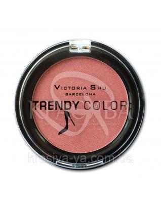 VS Trendy Colour Румяна компактные 118, 2.5 г : Макияж для лица
