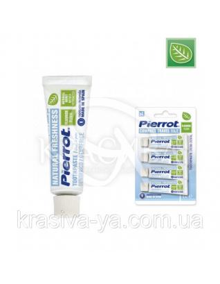 Пірот зубна Паста з м'ятою і фтором, 75 мл : Уходовая косметика
