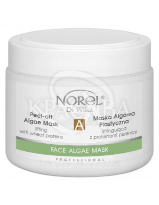 Восстанавливающая протеиновая альгинатная маска для чувствительной кожи, 250 мл : Norel