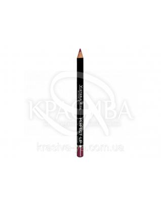 VS Perfect Lip Pecncil Карандаш для губ 149, 1.75 г : Декоративная косметика