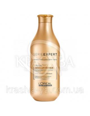 L'oreal Professionnel Absolut Repair Lipidium - Шампунь для восстановления поврежденных волос, 300 мл : L'oreal Professionnel