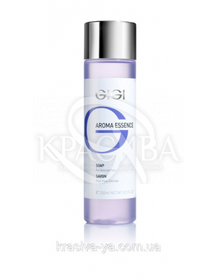 Мыло для чувствительной кожи - Aroma Essence Soap For Delicate Skin, 250мл