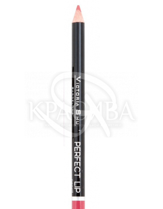 VS Perfect Lip Pecncil Карандаш для губ 141, 1.75 г : Макияж для губ