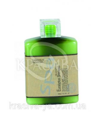 Шампунь c екстрактом евкаліпта, 300мл : Dancoly Cosmetics