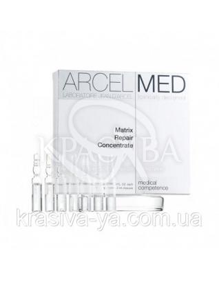 Matrix Repair Concentrate - Дермальный концентрат для восстановления кожи, 2 мл : Концентрат для лица