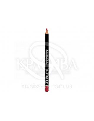 VS Perfect Lip Pecncil Карандаш для губ 147, 1.75 г : Макияж для губ