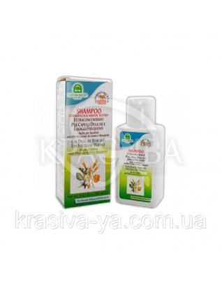 Шампунь з мигдальним маслом і пшеничними зародками, 250 мл : Natura House