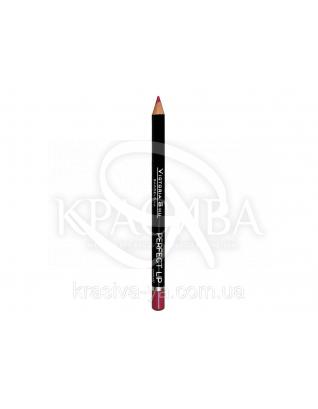 VS Perfect Lip Pecncil Карандаш для губ 148, 1.75 г : Макияж для губ