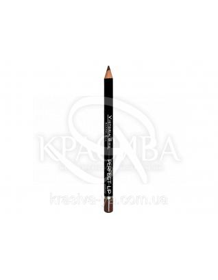 VS Perfect Lip Pecncil Карандаш для губ 144, 1.75 г : Макияж для губ