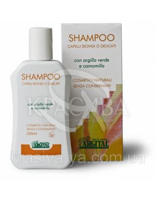 AR Шампунь для світлого волосся Shampoo For Blonde Hair, 250 мл : Argital