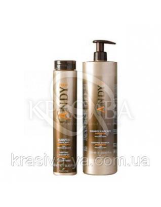 Andy Shampoo Purificante 250 ml - Шампунь проти лупи, 250 мл :