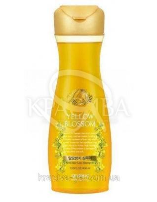 DAENG GI MEO RI Yellow Blossom Shampoo Шампунь проти випадіння волосся без сульфатів, 400мл : Daeng Gi Meo Ri