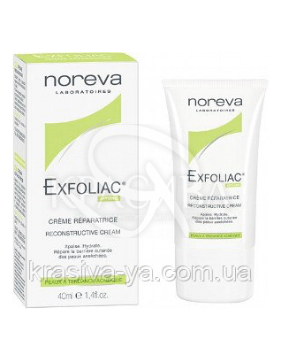 Exfoliac зволожуючий крем для обличчя, 40 мл : Noreva