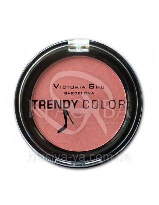 VS Trendy Colour Румяна компактные 117, 2.5 г : Макияж для лица