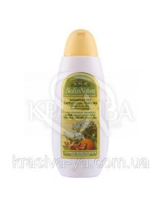 BM Шампунь Проти лупи / Anti-Dandruff Shampoo, 250 мл : BEMA COSMETICI