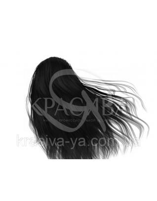 HC Inimitable Pictura Крем-краска 1 черный, 100 мл : Безаммиачная краска