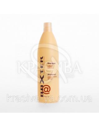 Baxter Шампунь восстанавливающий для сухих волос с экстрактом бамбука, 300 мл