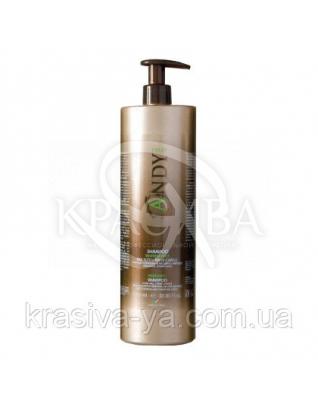 Andy Shampoo Rinfrescante 250 ml - Освежающий шампунь с маслом эвкалипта и ментола, 250 мл