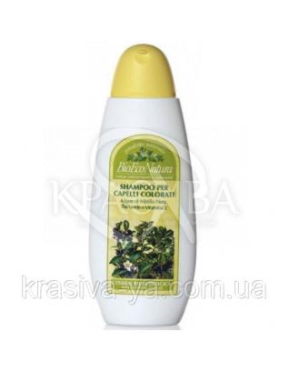 BM Шампунь для окрашенных волос / Shampoo for Colo, 250 мл