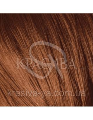 Igora Royal Reds - Крем-краска для волос 5-7 Светло-коричневый медный, 60 мл