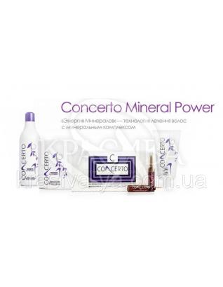 """Concerto Набор """"Энергия минералов"""" Шампунь+Маска с кератином+1 ампула минералов : Beauty-боксы для волос"""