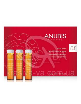 Algas Rojas Celu - Fit Concentrate Целюфит концентрат для сжигания жира, 8*10 мл